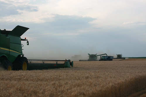 The combines are bout ready to finish a field