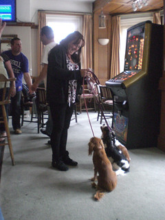 Lady Customer with Spaniels