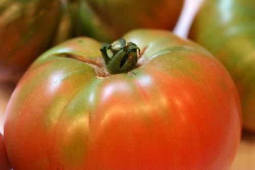 tomato 155