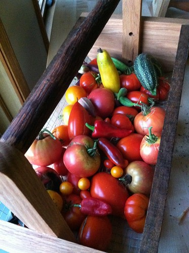 Just another Harvest by Taproot Garden