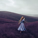Violet Mountains by rosiehardy