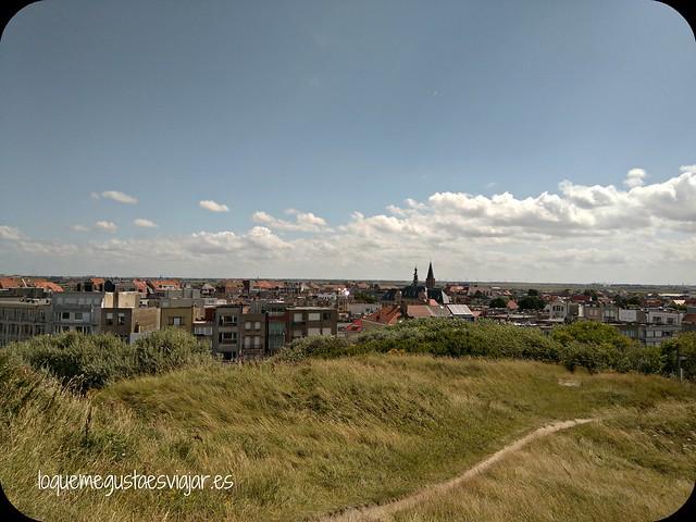 Belgica22