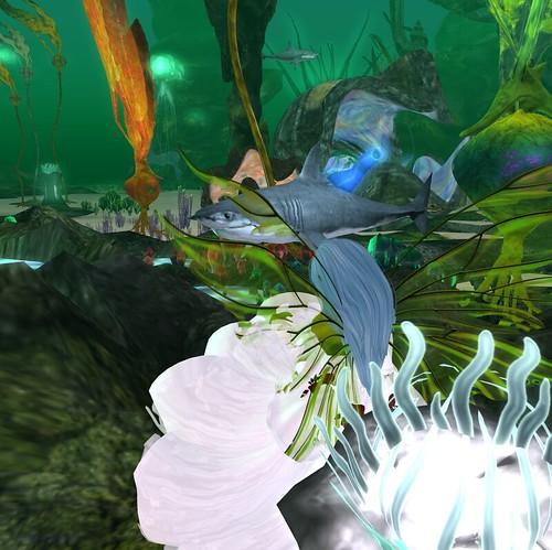 2012-04-30 Siren's Secret_013