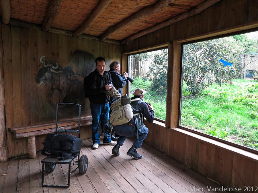 Sortie au Zoo D'amnéville le 05 Mai 2012 : Les photos 7002876000_eb558d269c_o