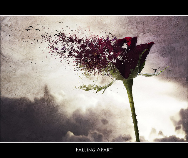 Falling Apart: Flickr - Photo