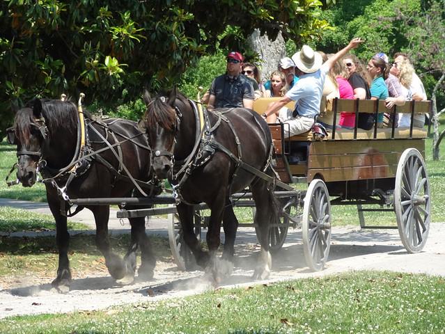 Hermitage-wagon-ride