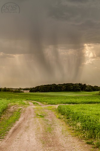 trees storm field rain weather clouds rural dark landscape countryside cloudy country trail showers lucerne alfalfa cumulonimbus