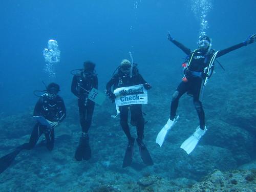 志工進行珊瑚礁體檢