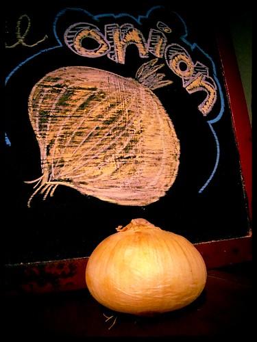 17 weeks = onion