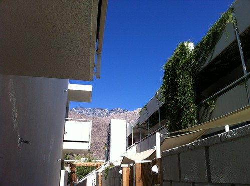 view from the hotel (Ace Palm Springs)