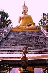 Wat Ban Paang.  วัดบ้านปาง