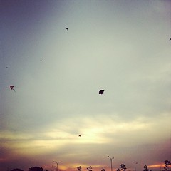 Kites in the Winds