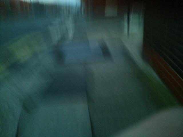 PIC_0290