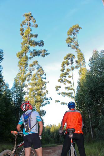 Trilha de Mountain Bike - Andradas - Aguas da Prata - por Pedro Barreto-228