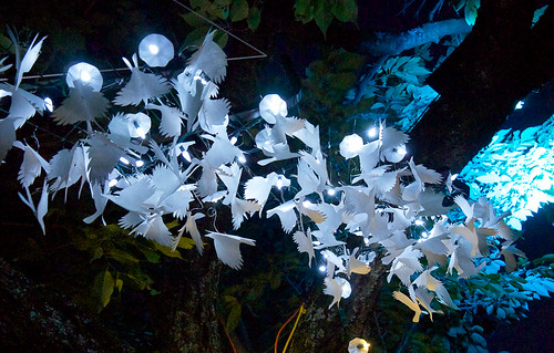 Illuminares 2012- Illuminated crows