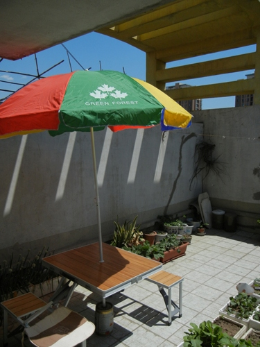 Rooftop Vegetable Garden _ 0431