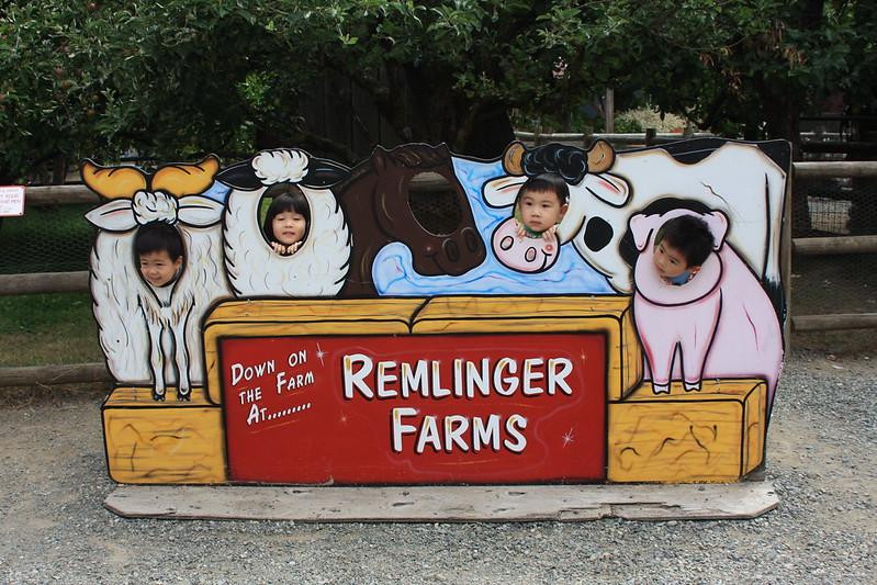 kids at remlinger farm