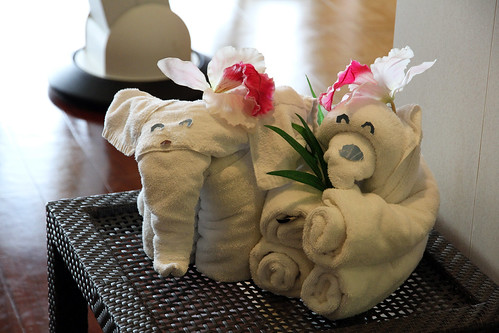 Norwegian Pearl - Spa Towel Animals