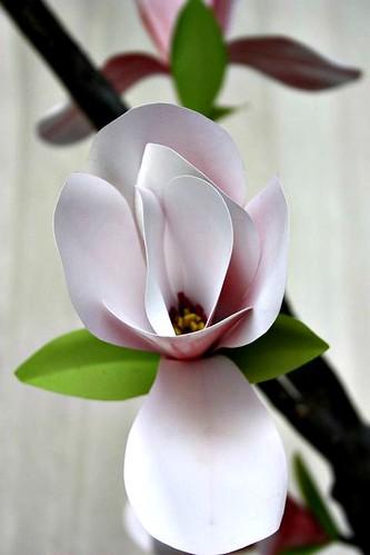 Paper Magnolia Blossom