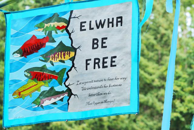 Elwha Be Free