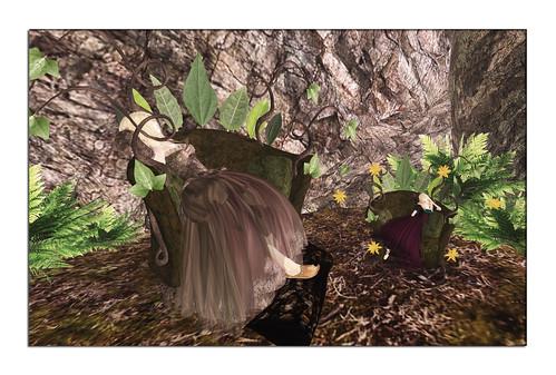 FF-0423-dreamscape_001-1280