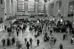"""Sometimes I feel like I live in Grand Central Station"""