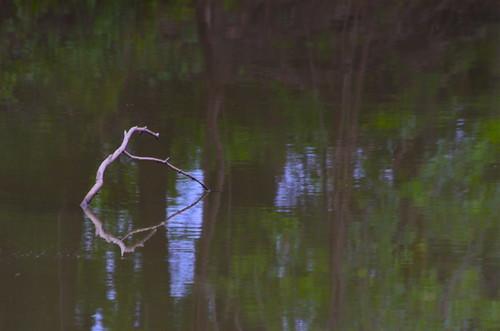 reflection river wabash wabashriver indianawater linngroveindiana