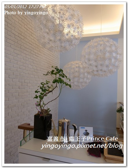 嘉義市_貓王子20120501_R0060933
