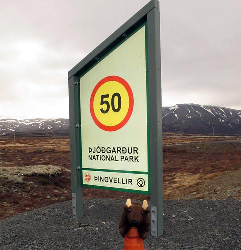 12-04_Iceland_IMG_6098_21M