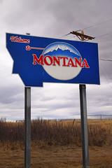Hello, Montana