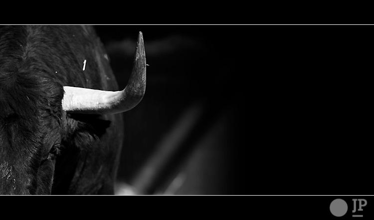 toro-de-el-ventorrillo2
