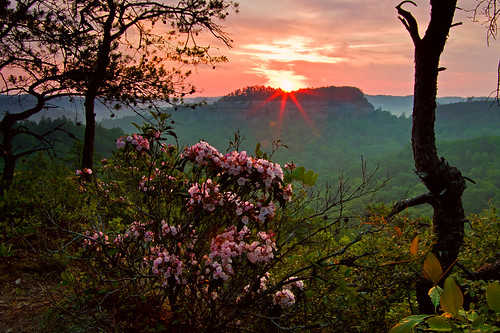 Red River Gorge sunrise at Settimi Point.
