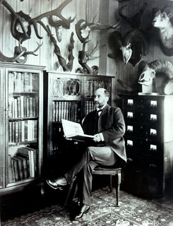 William T. Hornaday, in his Office, Bronx Zoo, 1905
