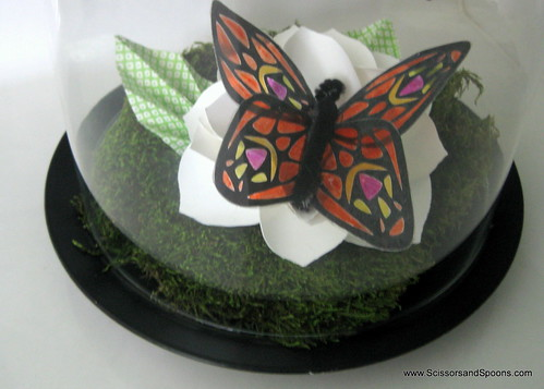DIY Butterfly jar Detail
