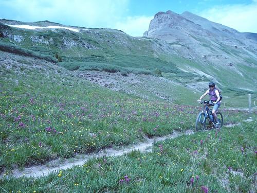 Ilana riding
