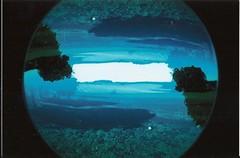 atoll(0.0), sea(0.0), marine biology(0.0), earth(0.0), reef(0.0), ocean(1.0), azure(1.0), fisheye lens(1.0), reflection(1.0), underwater(1.0), blue(1.0),