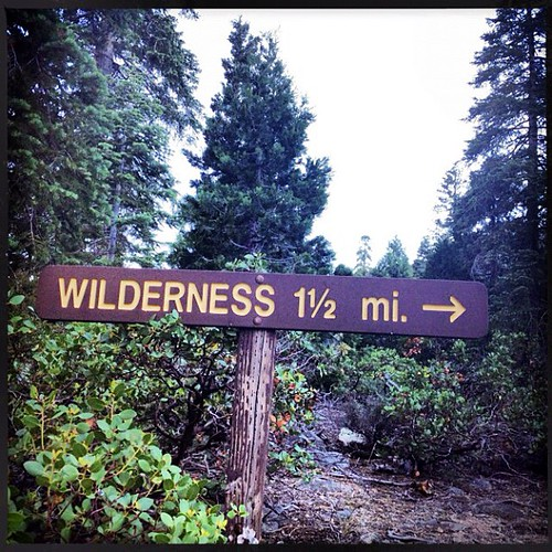 Indeed. Days of it & @prawnpie #wilderness