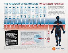 The Anatomy of Obamacare (What's not to like?) by Third Way