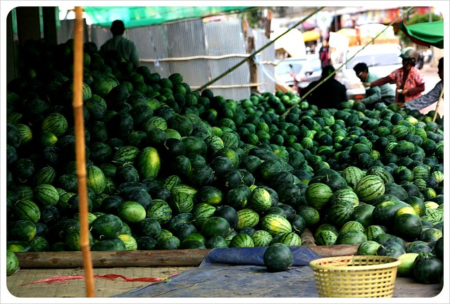 battambang market melons