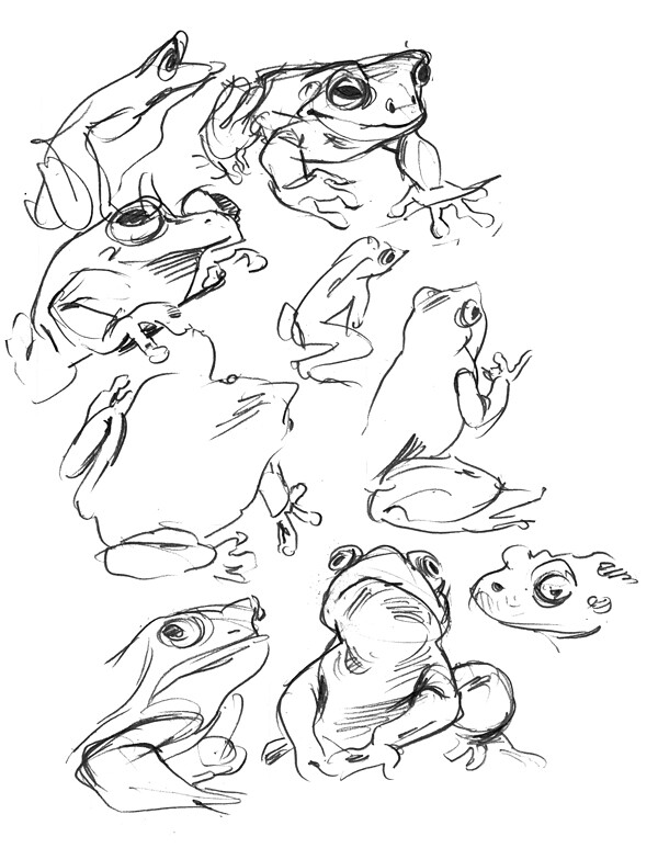 Page o' Frogs