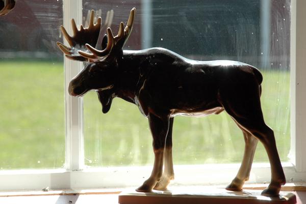 porcelain elk