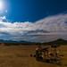 High Speed Desert Solitude by nebarnix