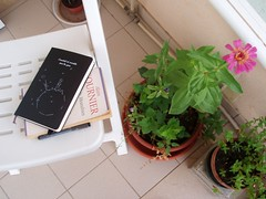Reading and writing near the flowers