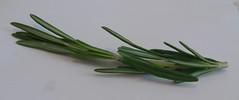 vegetable(0.0), flower(0.0), longjing tea(0.0), produce(0.0), food(0.0), scallion(0.0), chives(0.0), rosemary(1.0), plant stem(1.0),