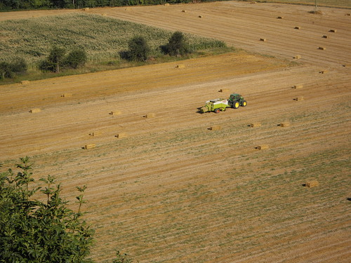 Tractor at work in a field (Mombaldone, Piemonte, NW Italy)