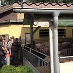 Herbstwanderung 2012 - Tösstal
