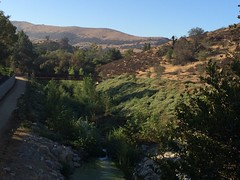 View from the stairs of Medea Creek Restoration Project