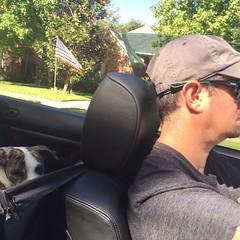 Jack @ 5 months #puppylove