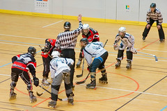roller derby(0.0), stick and ball games(1.0), skating(1.0), roller sport(1.0), sports(1.0), roller in-line hockey(1.0), hockey(1.0), roller skating(1.0),