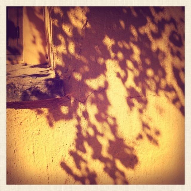 shadows1-fl
